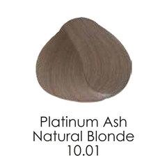 10.01 platinumashnaturalblonde