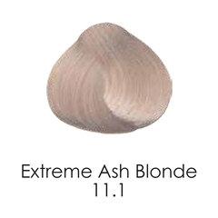 11.1 extremeashblonde