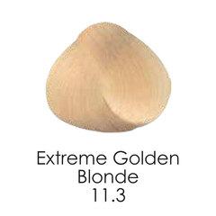 11.3 extremegoldenblonde